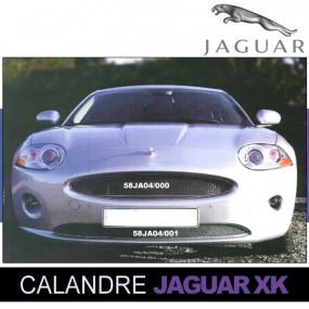 Grilles de calandre pour Jaguar XK cabriolet 2006/2012 spoiler