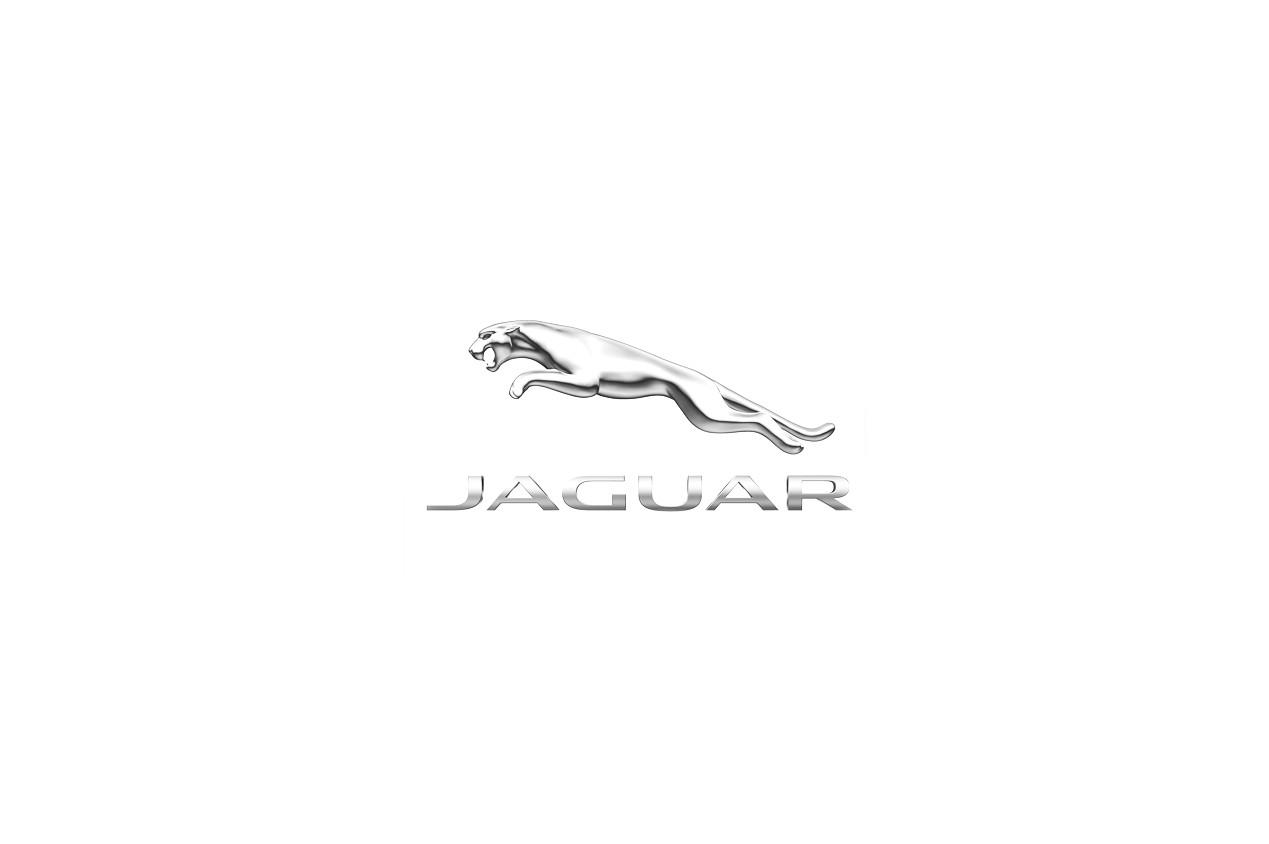 Autres Jaguar